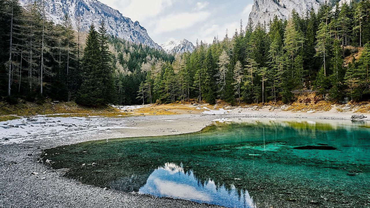 леса Австрии