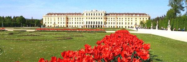 парк и аллея в Вене
